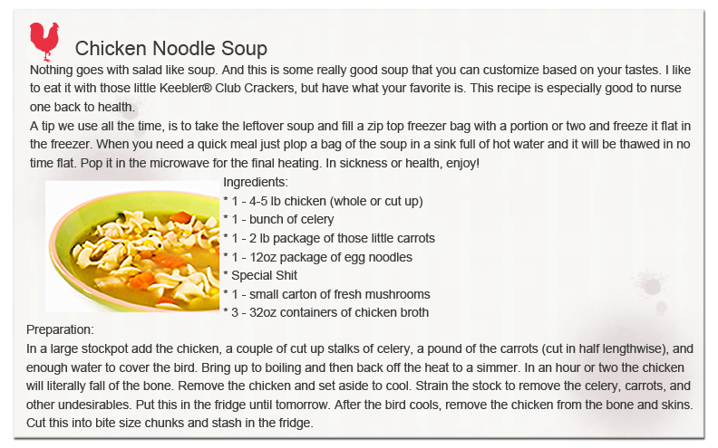 Chicken Noodle Soup page 1